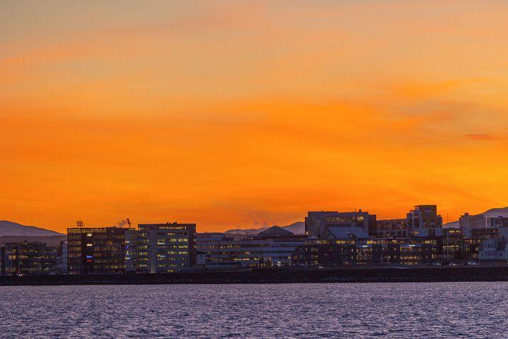 Brotið átti sér stað í Reykjavík í febrúar 2019.