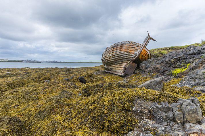 Þegar gengið er yfir eiðið á Geldinganesi blasir við þetta yfirgefna skipsflak sem gaman er að skoða og príla í.