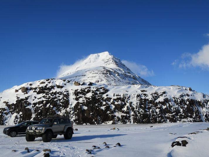 Mynd tekin í heimsókn namibískra áhrifamanna til Íslands í febrúar árið 2014.