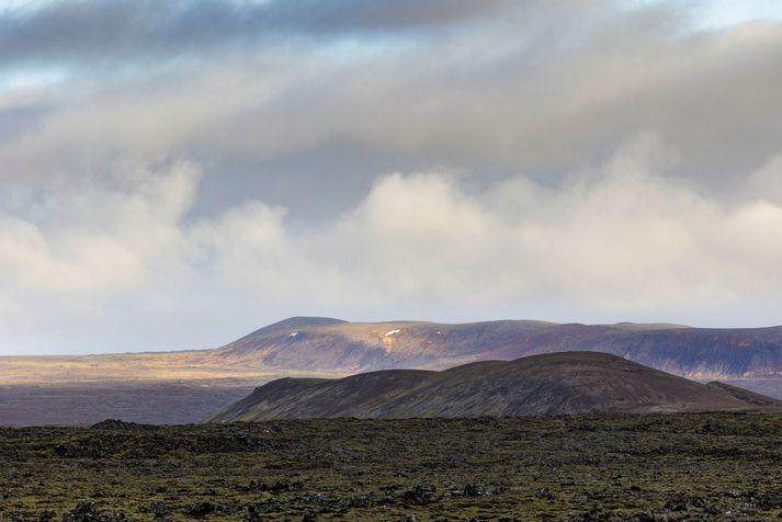 Enn eru taldar á að það geti komið til eldgoss á því svæði þar sem jarðskjálftavirknin hefur verið hvað mest á Reykjanesi.