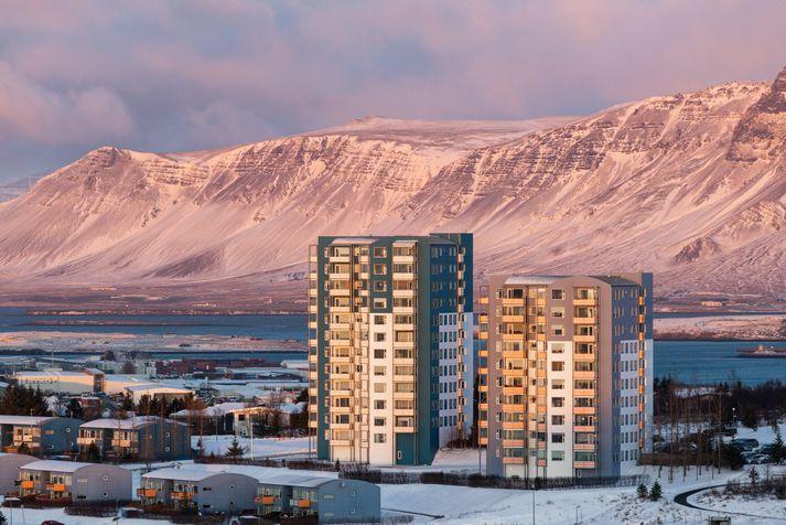 Veðurfræðingur mælir með að landsmenn njóti janúarveðursins á meðan það er til friðs.