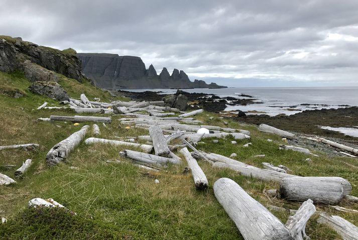 Útsýni til Drangaskarða er hvergi fallegra en úr Drangavík en fjaran er einnig spennandi.