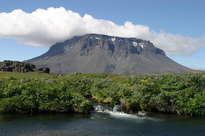 Herðubreiðarlindir eru að margra mati einn fegursti staður hálendisins.