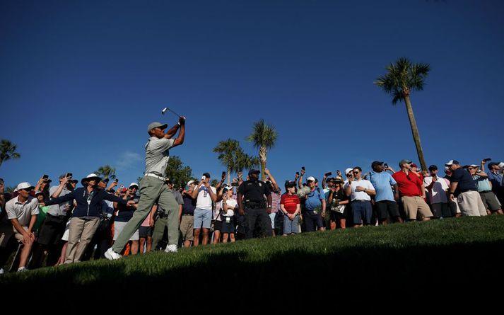 Tiger Woods var í stuði.