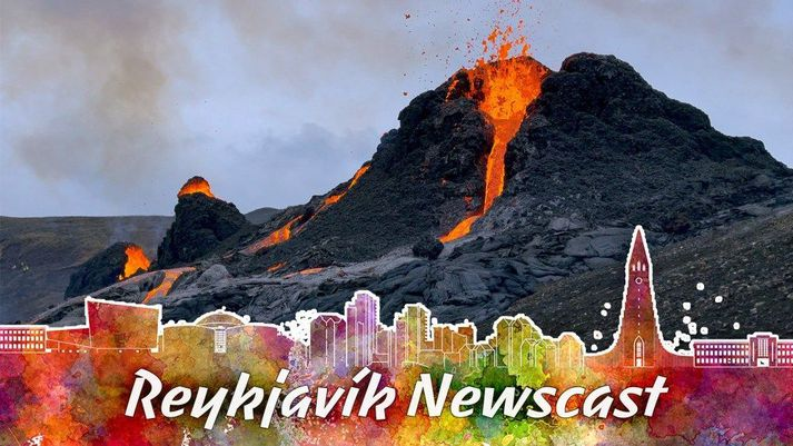 Valur Grettisson, editor-in-chief at Reykjavík Grapevine and Art Bicnick made a video next to the volcano and showed their audience the new volcano in Geldingardalur.