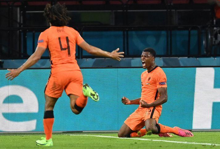 Mennirnir sem sáu til þess að Holland vann Úkraínu 3-2 í hreint út sagt ótrúlegum knattspyrnuleik.