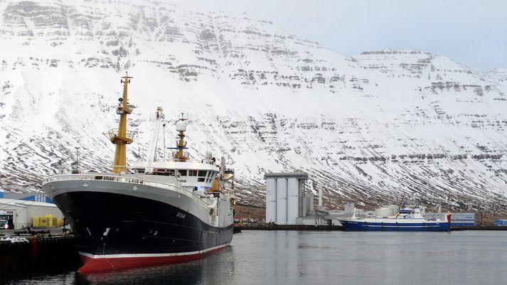 Frá Norðfjarðarhöfn í dag. Nær er Polar Amaroq GR og fjær Hákon EA, sem taka bæði þátt í leiðangrinum.