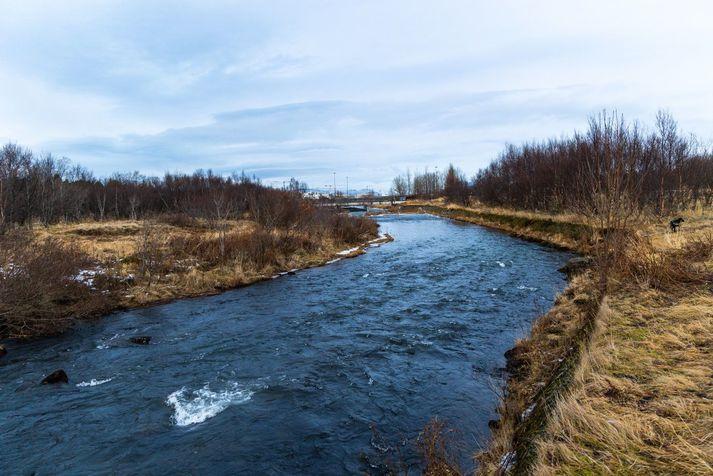 Spáð er norðan og norðaustan, fimm til þrettán metrar á sekúndu í dag.