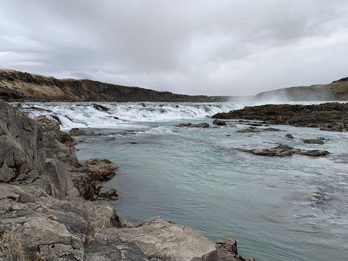 Þjórsá er mjög veiðileg þessa dagana og það styttist í opnun.