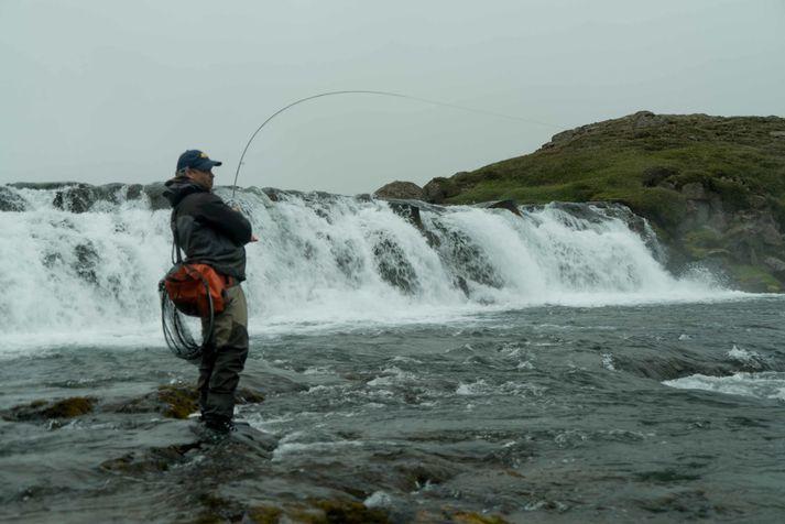 Norðlingafljót er komið til Fish Parnter