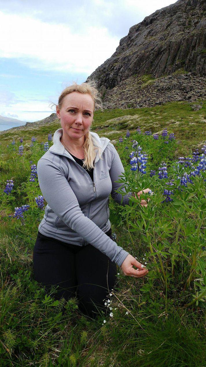 Anna Berg Samúelsdóttir, umhverfisstjóri Fjarðabyggðar, skoðaði lúpínubreiður í friðlandinu á Hólmanesi í gær.