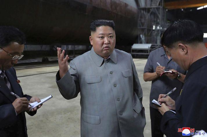 Kim Jong-un leiðtogi Norður-Kóreu