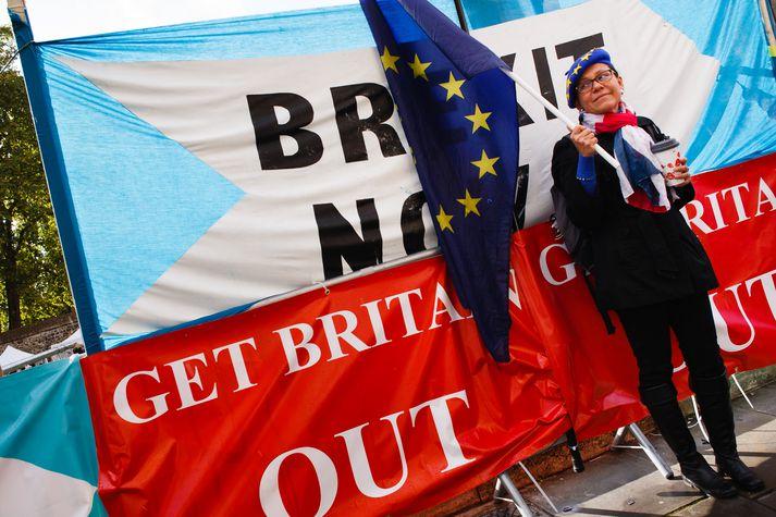 Stuðningsmenn beggja hliða Brexit-deilunnar mótmæltu við Westminster í dag.