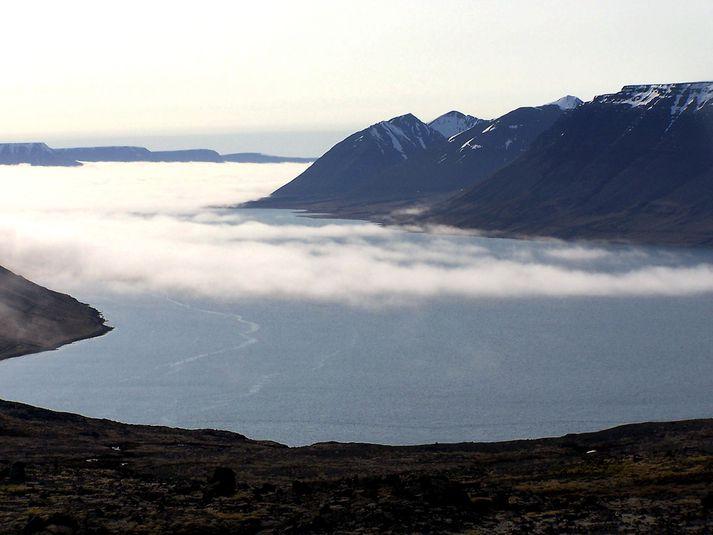 Lífríkið þarf minnst 6 mánaða hvíld eftir að slátrað er úr laxeldiskvíum.