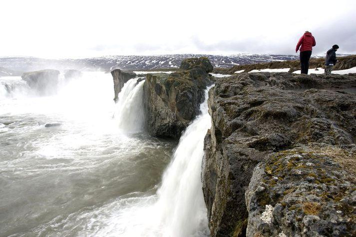 Orkan úr iðrum jarðar og fallvötnum er gullkýr okkar Íslendinga. Nú er karpað um hvað gera skuli við tekjurnar.