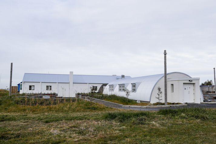 Bragginn í Nauthólsvík. Stráin sjást m.a. til vinstri á mynd.