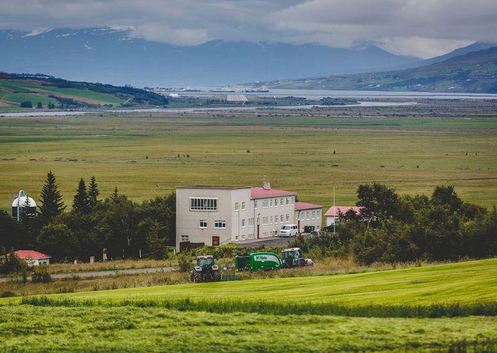 Laugaland í Eyjafirði hefur verið rekið af félaginu Pétri G. Broddasyni ehf. í meira en um áratug.