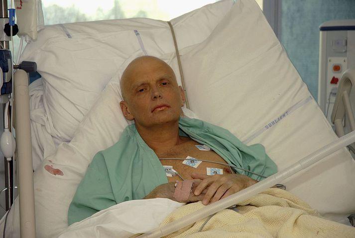 Alexander Litvinenko veslaðist upp og lést á endanum eftir að tveir útsendarar rússnesku leyniþjónustunnar byrluðu honum sjaldgæfa og afar hættulega geislavirka samsætu árið 2006. Hann var 43 ára gamall.