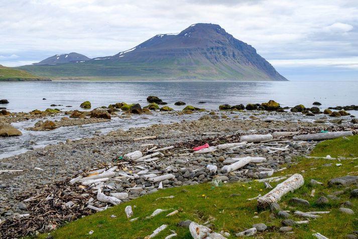 Gunnólfsvíkurfjall í Finnafirði á Norðausturlandi.