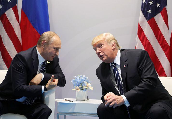 Trump og Pútín hittust á G20-fundi í Hamborg árið 2017.