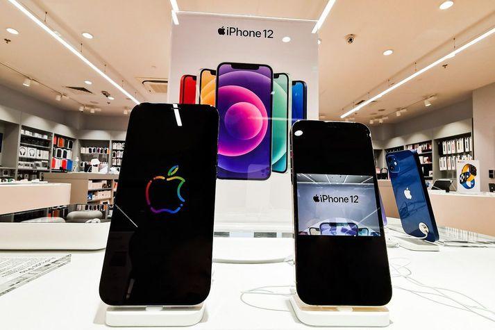 iPhone 13 er sagður vera svipaður og iPhone 12 en skjár nýja símans á að vera betri og myndavélin sömuleiðis.