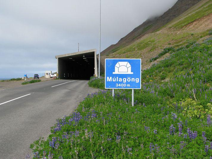 Ólafsfjarðargöng eða Múlagöng eru um 3.400 metrar að lengd og er að finna milli Ólafsfjarðar og Dalvíkur.