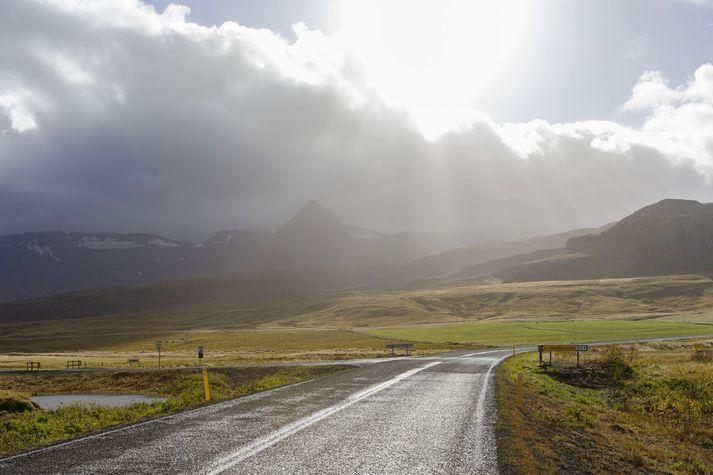 Í Borgarfirði.