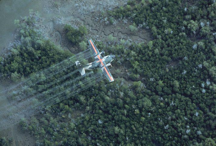 Á þessari mynd frá 1970 sést bandarísk flugvél úða Agent Orange á regnskóga Víetnam.