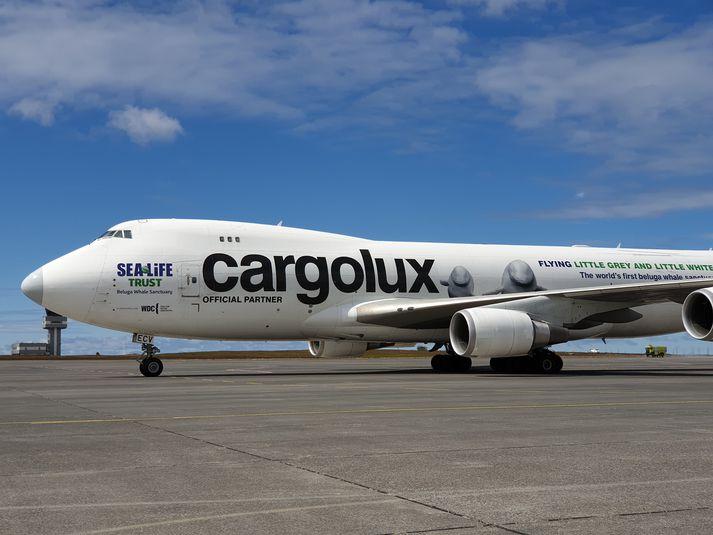 Sérútbúin vél Cargolux lenti á Keflavíkurflugvelli rétt fyrir klukkan tvö í dag.