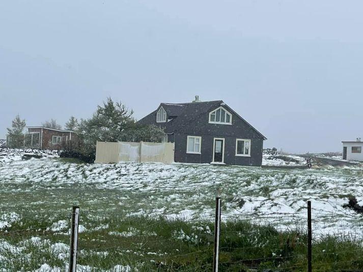 Þessi mynd var tekin í Mývatnssveit í dag.