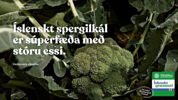 Íslenskt spergilkál frá Sölufélagi garðyrkjumanna