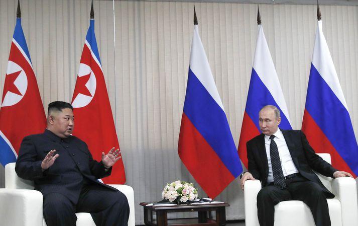 Kim Jong un og Vladimir Putin segjast hafa átt góðan og gagnlegan fund.