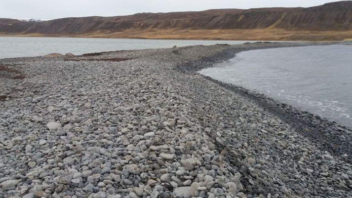 Svona leit malarkamburinn við Kollavíkurvatn út í dag. Hérna var skarðið fram á síðustu helgi. Sjá má hvalshræið sem tvær þústir til vinstri í vatninu við Mölina.