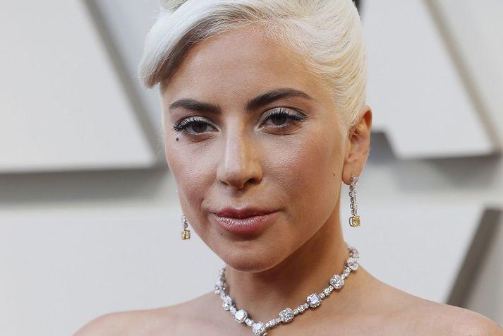 Lady Gaga bauð hálfrar milljón dala fundarlaun fyrir hundana og konan sem skilaði hundunum og sagðist hafa fundið þá er meðal þeirra fimm sem voru handtekin.